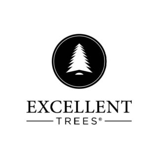 Excellent Trees
